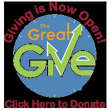 donate button gg